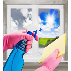 Natural Window Cleaner Recipe