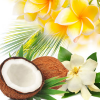 Aloha Fragrance Oil