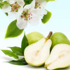 Anjou Pear Blossoms Fragrance Oil