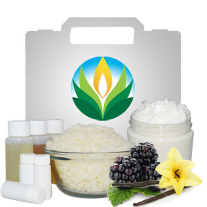 Black Raspberry Vanilla Body Butter Kit