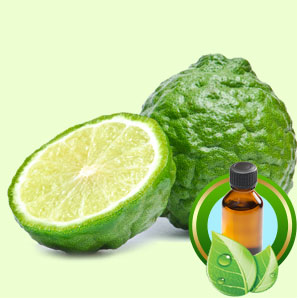 Bergamot Italian Rectified ESSENTIAL OIL