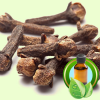 Clove Bud Native Distilled ESSENTIAL OIL