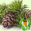 Cedarwood Virginiana ESSENTIAL OIL