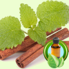 Cinnamon Leaf Ceylon ESSENTIAL OIL
