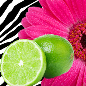 Hot Pink Lime Fragrance Oil | Natures Garden Scents