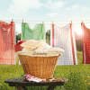 Country Clothesline Fragrance Oil