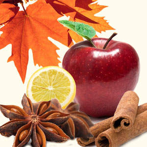 Autumn Magic Fragrance Oil