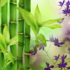 Australian Bamboo Grass Fragrance Oil
