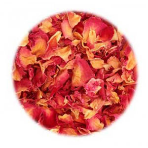 Rose Buds & Petals Red