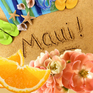 Weekend in Maui Fragrance Oil | Natures Garden Scents