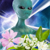Alien Princess Fragrance Oil