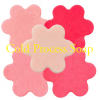FUN Soap Colorant- Neon Pink 1 oz.