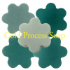 FUN Soap Colorant- Teal 1 oz.